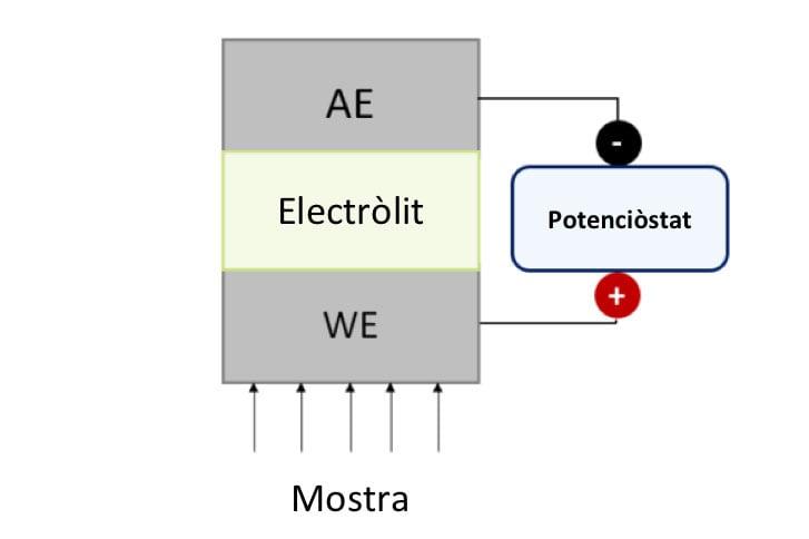 Figura 1. Representació esquemàtica d'un sensor amperomètric genèric. WE: Elèctrode de Treball, AE: Elèctrode auxiliar.