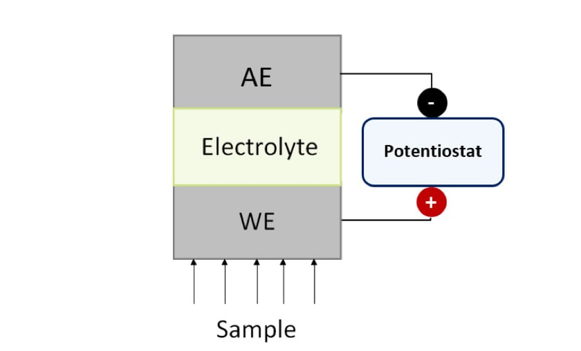 Figure 1. Schematic representation of a generic amperometric sensor. WE: Working Electrode, AE: Auxiliary Electrode.